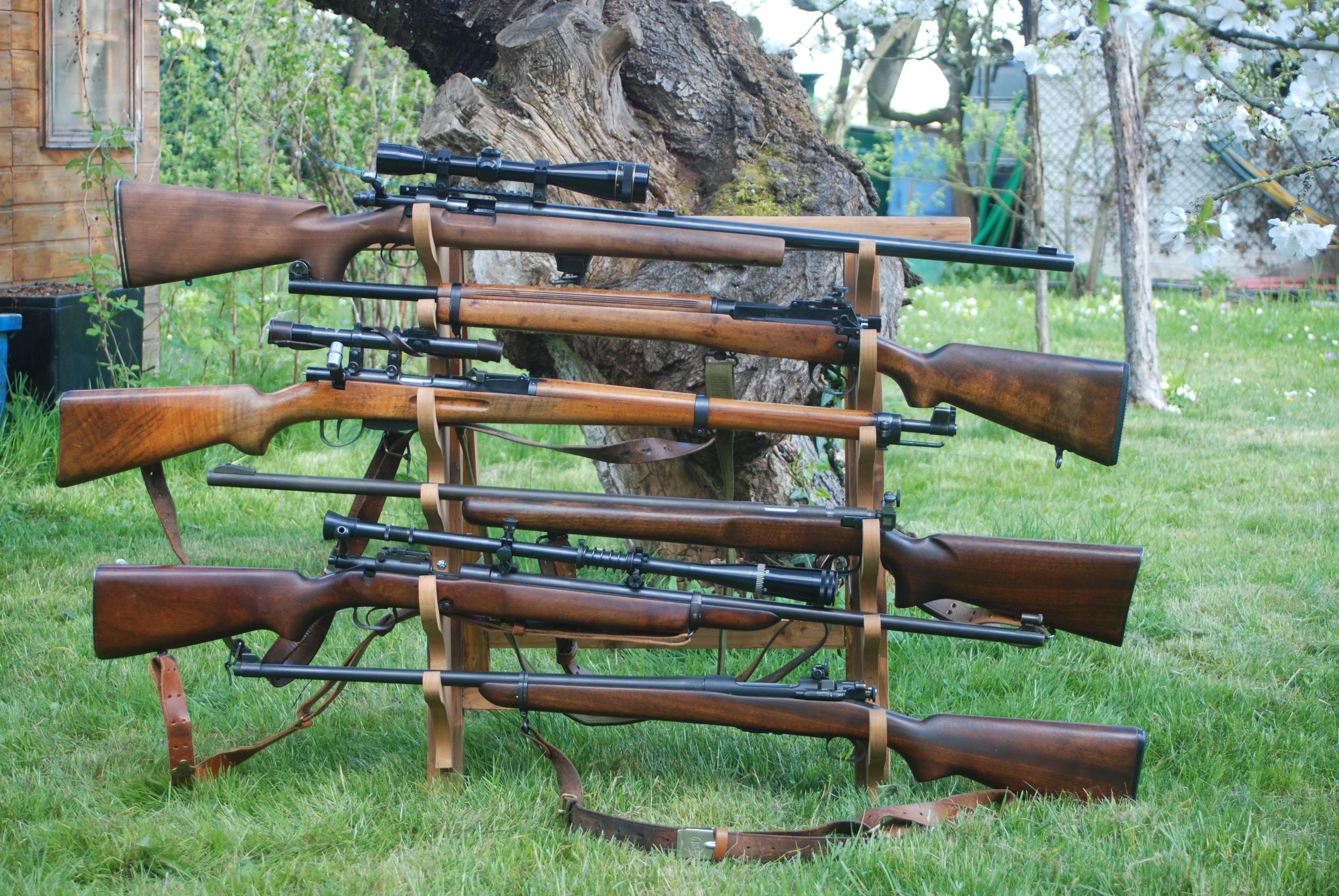 carabines 22Lr